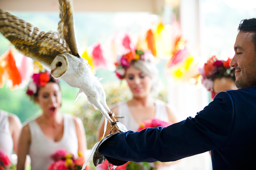 A white barn owl surprised guests at the ceremony, delivering the rings to the alter