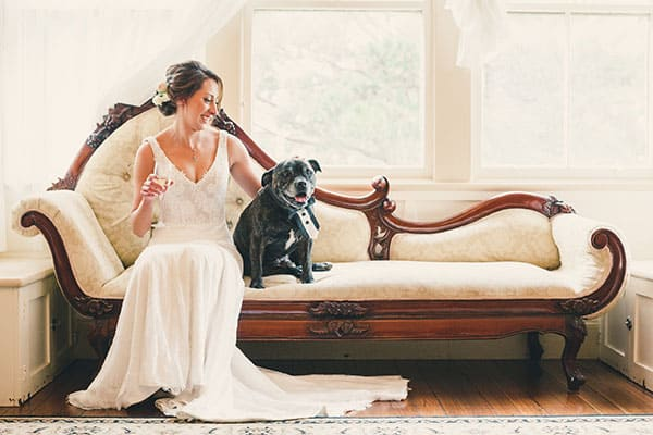 Wedding animals: Bride and her dog wearing a bow-tie
