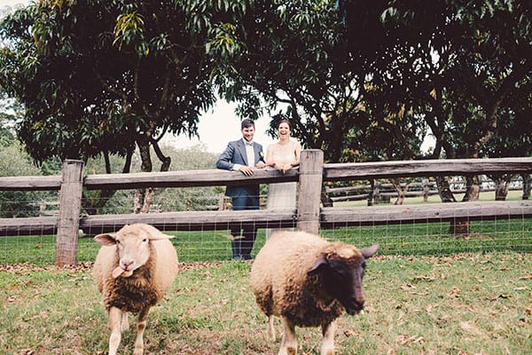 Wedding animals: Bride and groom at a local farm with goats