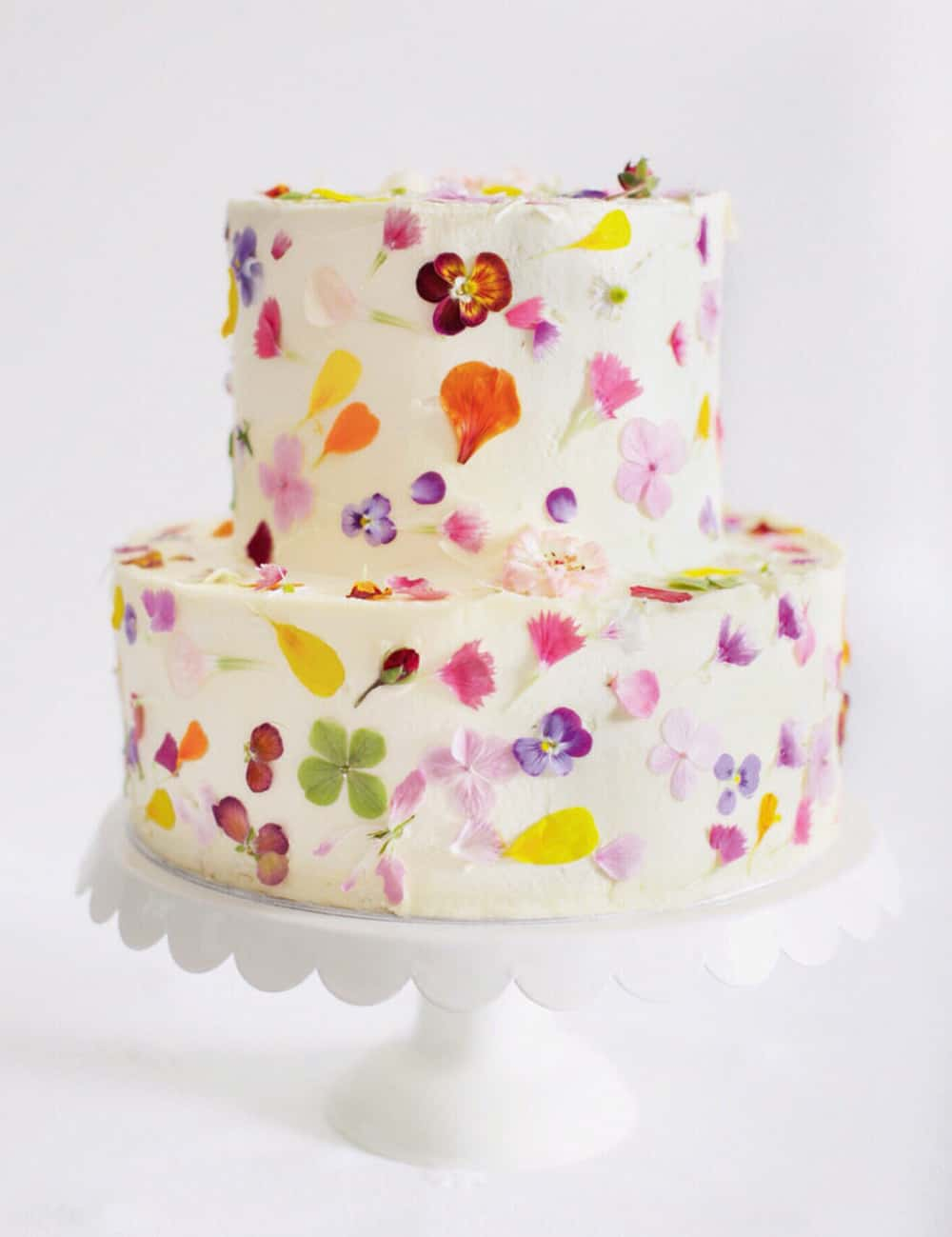colourful wedding cake by Gillian Bell