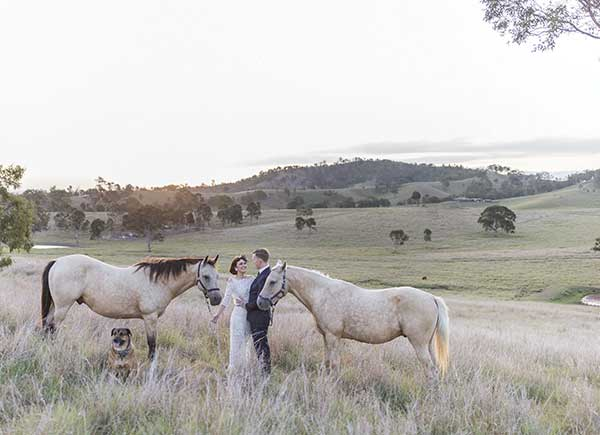 Bride and groom with horses in a field by Lyndal Carmichael Photography.