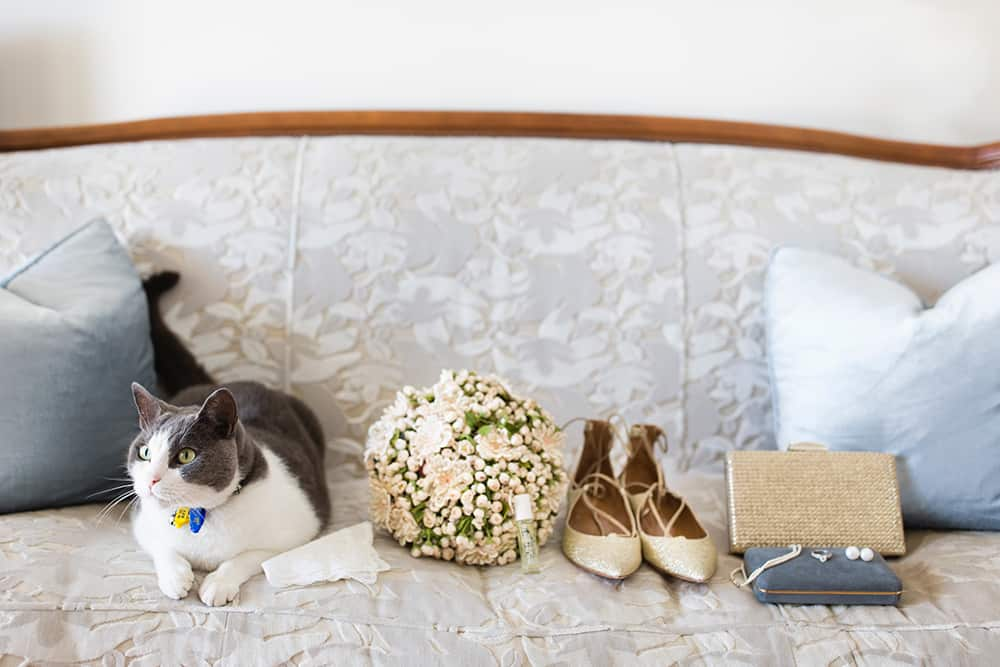 Party animals: brides accessories with her pat cat.