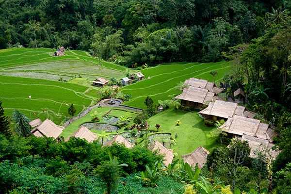 Village and rice fields of Bali.