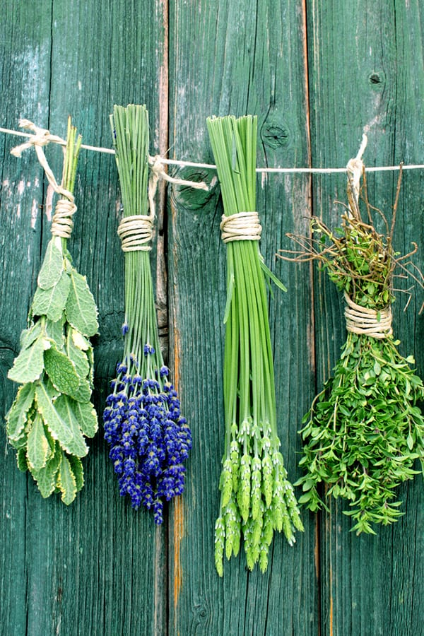 Bunches of herbs tied together for your wedding.