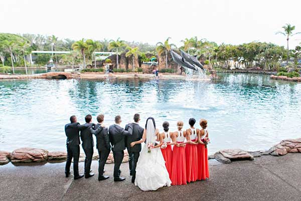 A Village Roadshow theme parks: Bridal party watching the dolphin show