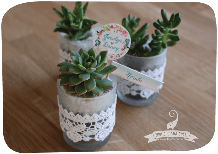 A beautiful guest gift idea: cactus plants