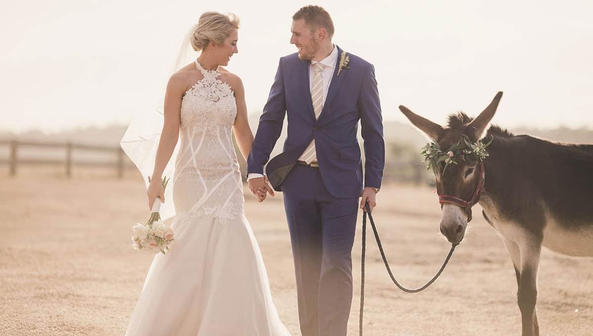 alex and josh wedding