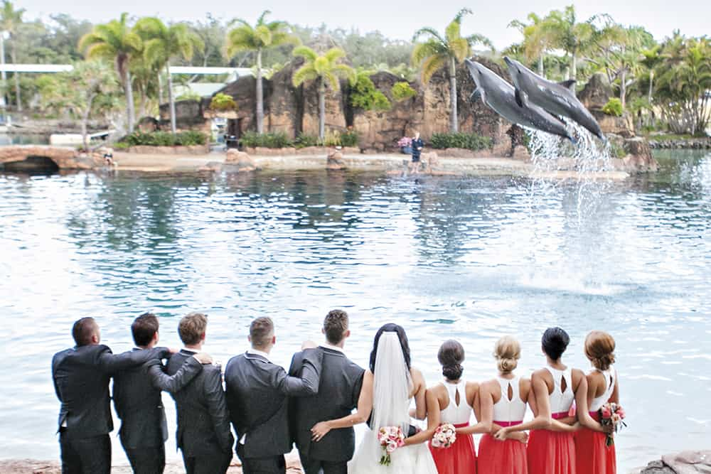 5 Reasons To Consider A Theme Park Wedding Queensland Brides