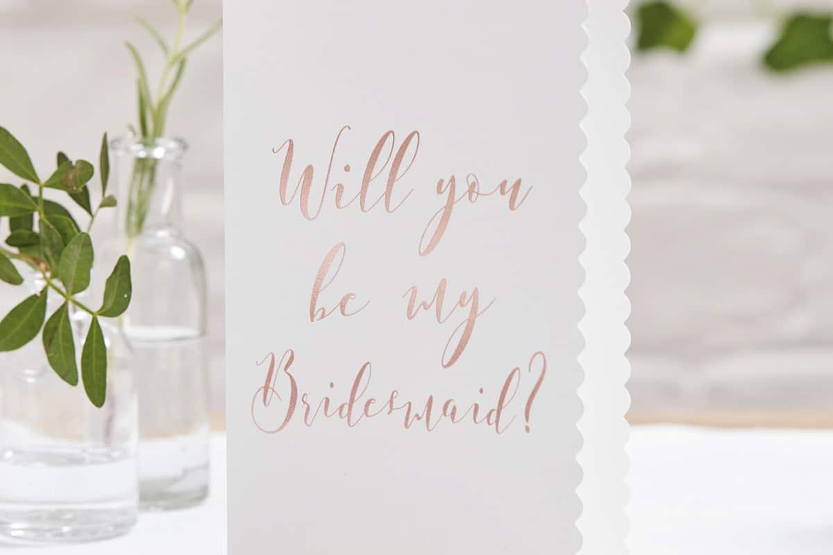 Bridesmaid-proposals-SS18-Ginger-Ray-01