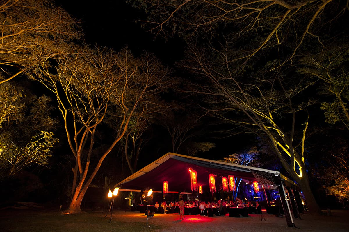 126498-56-Flames-of-the-Forest-Tourism-and-Events-Queensland