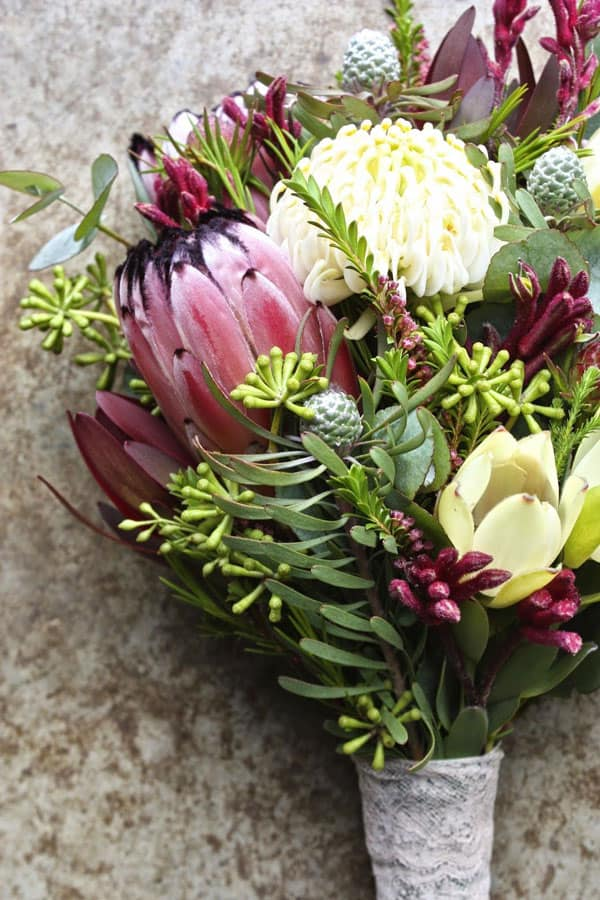 Leucadendron Australian native flower for wedding bouquet