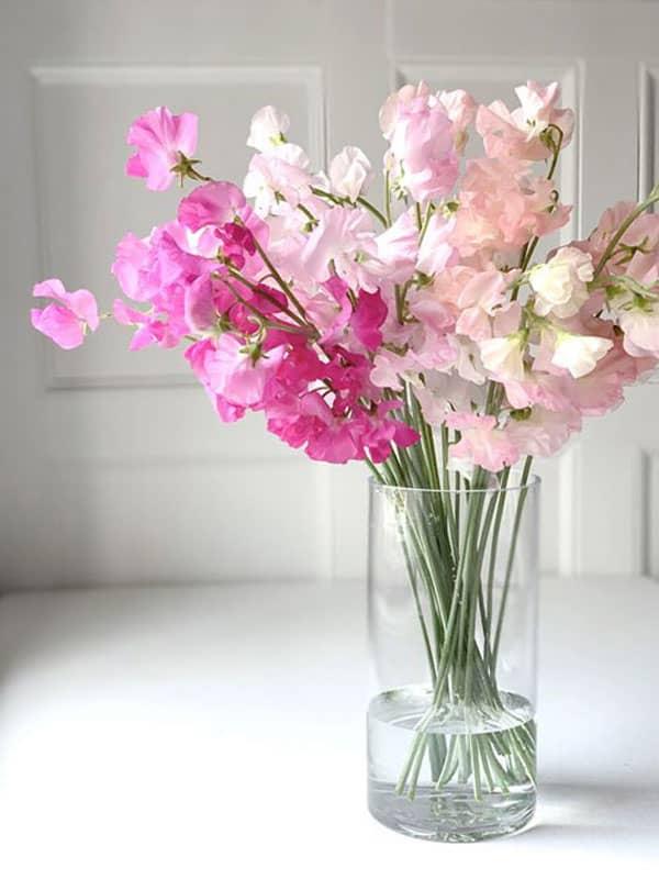 Spring Wedding Flowers, sweet pea