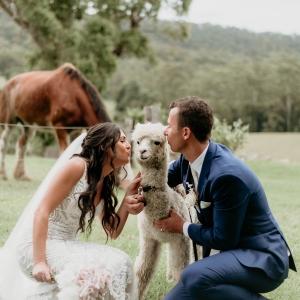 real wedding courtney jake